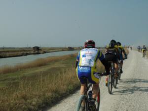 piste ciclabili parco delta