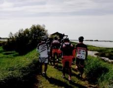 Escursioni nella Salina di Comacchio