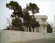 Proiezioni presso il giardino della casa museo Remo Brindisi