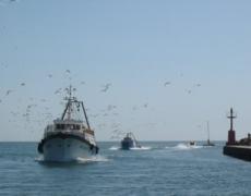 (Italiano) Aperitivo con il pescatore