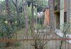 cortile comune